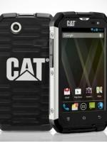 cat-telefon1