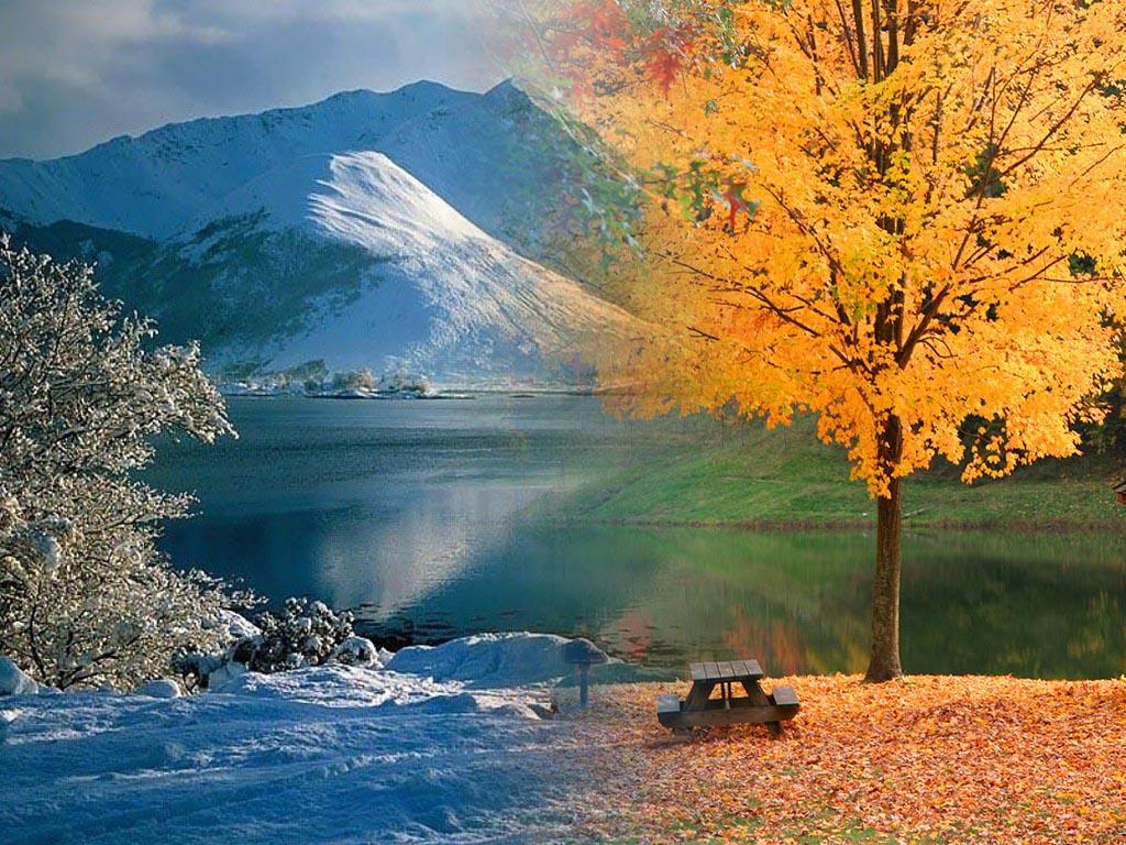 kar-manzarasi-yapboz