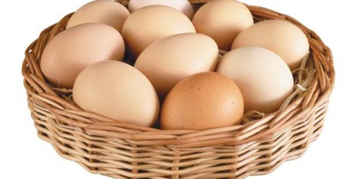 yumurta-on-resim