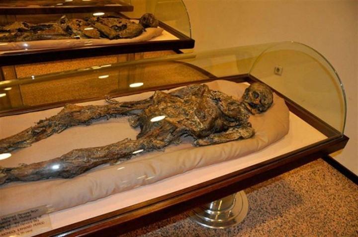 amasya müzesi mumyalar