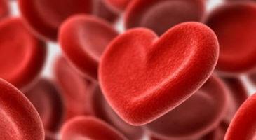 kolestrolün kalbe olan etkisi