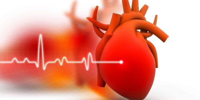 kalp yetmezliği hakkında bilgi